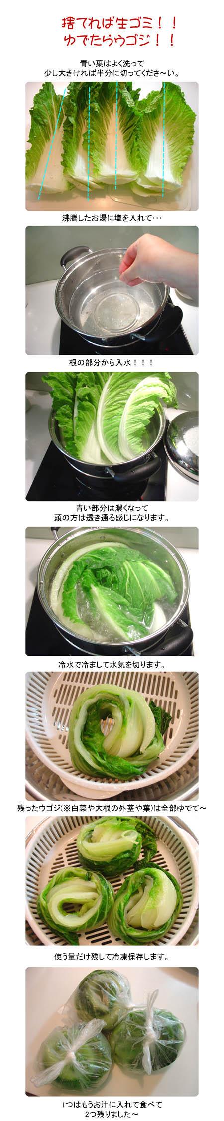 マッキムチ/チヂミ