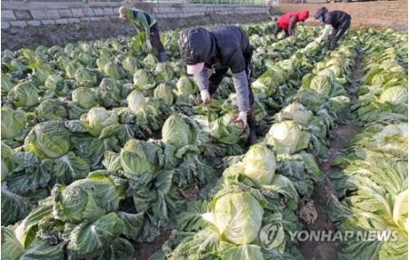 11月の消費者物価 今年最低水準の1.3%上昇=韓国